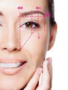 女の濃い眉毛の黄金比