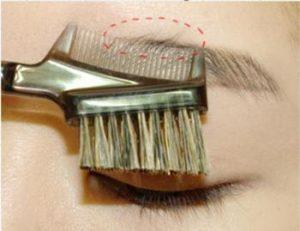 ナチュラル系女子のための眉毛の形を上カット