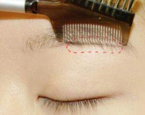 ナチュラル系女子のための眉毛の形で下カット